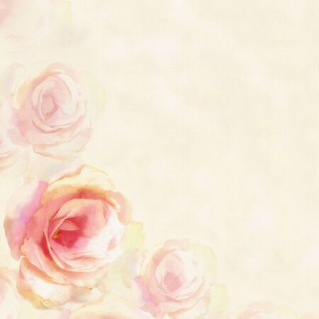 yellow: Greeting card with light roses  on hazed  background in pastel colors Stock Photo