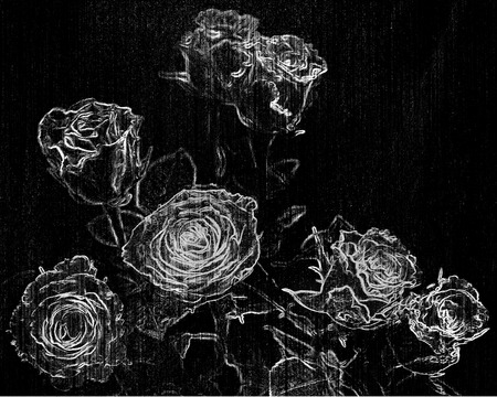 Stylized skeching bouquet of roses in black and white design