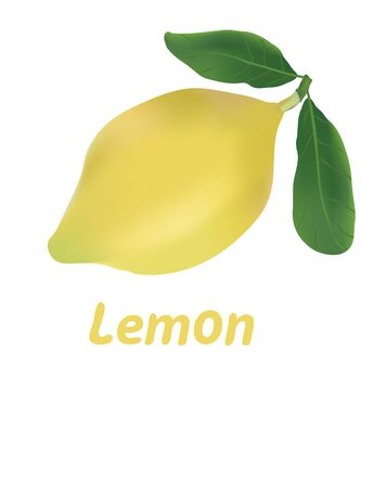 limon: Lemon isolated on white.Sticker with space for text.