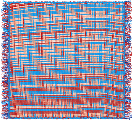 Weave colorful plaid with fringe isolated on white