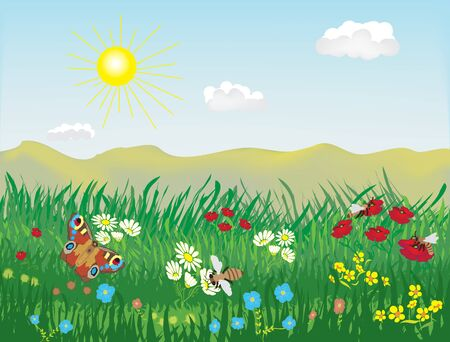 Spring and summer lanscape with meadow, grass, flowers, bees, butterfly, hills, sky, sun, clouds Ilustracje wektorowe