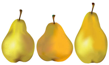 Set of three natural green, orange, yellow pears isolated on white
