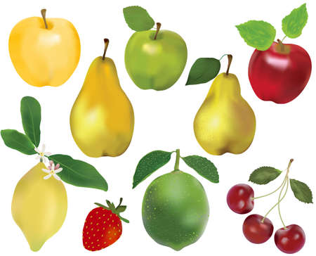 Set of natural ripe fruits and berries. Apples, pears, lemon, lime, cherry, strawberry. Isolated on white.