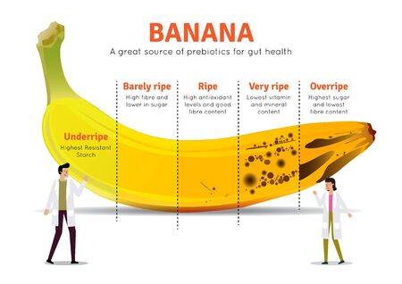 Illustration of a great source of Banana. Banana nutrition facts