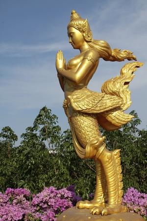 Mythical female bird  Stock Photo - 13149935