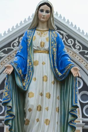 vertica: Virgin Mary Stock Photo