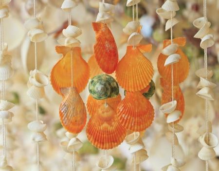 coastal feature: Curtain made of seashells Stock Photo