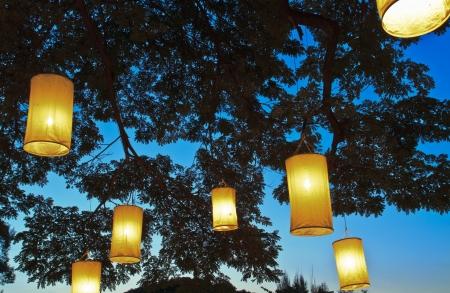 紙燈籠上的樹枝