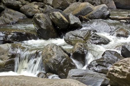 在深林瀑布