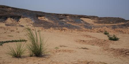 arid: Arid Dry Desert Landscape Stock Photo