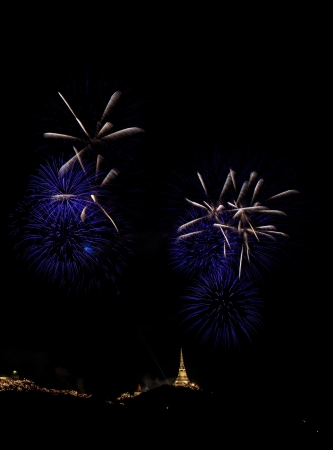 Colorful fireworks on the black sky background Stock Photo - 18993148