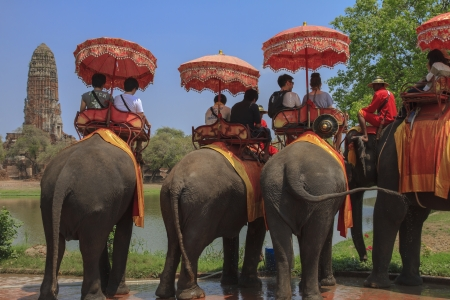 AYUTTHAYA, THAILAND - MARCH 7  Tourists on an elephant ride tour of the ancient city on March 7, 2013 in Ayutthaya  Stock Photo - 19257055