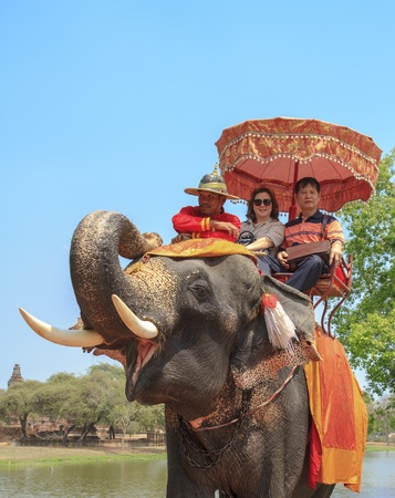 AYUTTHAYA, THAILAND - MARCH 7  Tourists on an elephant ride tour of the ancient city on March 7, 2013 in Ayutthaya  Editorial
