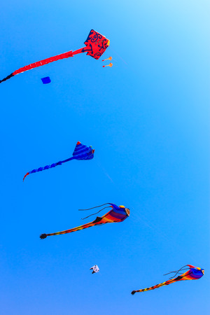 kites flying in the blue sky photo