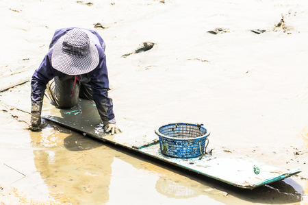 turbid: A cockle farmer sitting on the board while collect cockles from the sea in Phetchaburi province ,Thailand