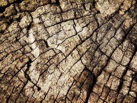 Wooden texture. It is possible  photo