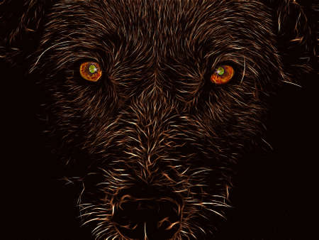 illustration profile dog on black aflame illustration