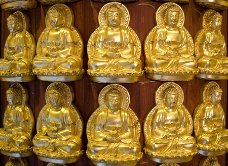 Gold buddha Stock Photo - 13413519