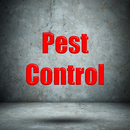 Pest Control concrete wall photo