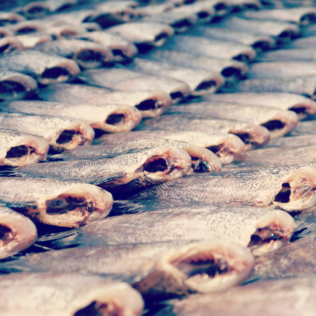 vend:  dried fish old vintage retro style Stock Photo