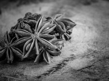 anise: black and white star anise Stock Photo