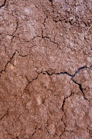 turf: veengrond als achtergrond
