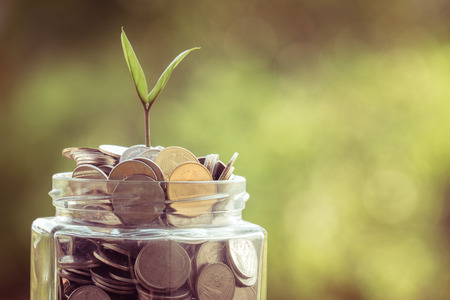 plant growing out of coins with filter effect retro vintage style 写真素材