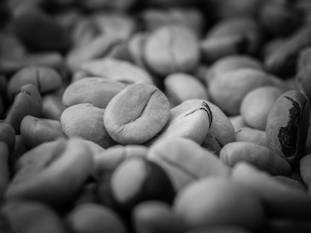 unroasted: black and white coffee beans Stock Photo