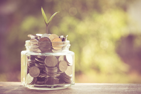loans: plant growing out of coins with filter effect retro vintage style Stock Photo
