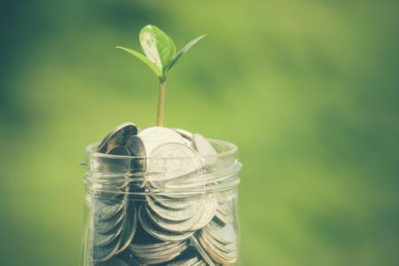 ahorros: planta que crece de monedas con efecto de filtro de estilo retro de la vendimia Foto de archivo