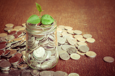 make an investment: plant growing out of coins with filter effect retro vintage style Stock Photo