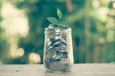 prosperidad: planta que crece de monedas con efecto de filtro de estilo retro de la vendimia Foto de archivo
