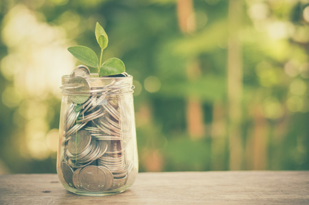 successful business: plant growing out of coins with filter effect retro vintage style Stock Photo