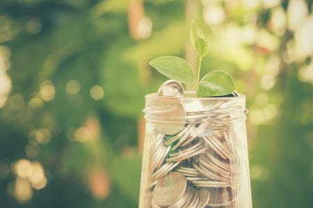 plant groeit uit van munten met filter effect retro vintage stijl Stockfoto