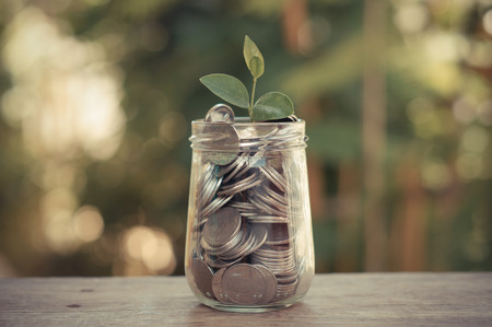 plant growing out of coins with filter effect retro vintage style Stockfoto