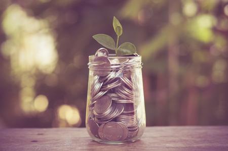 banco dinero: planta que crece de monedas con efecto de filtro de estilo retro de la vendimia Foto de archivo