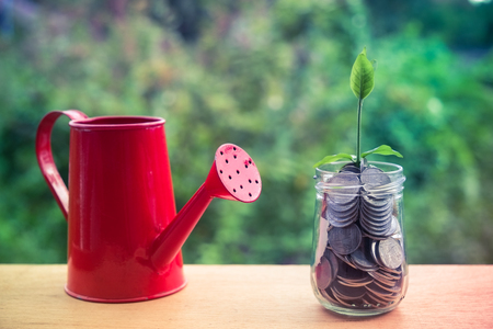 investment ideas: plant growing out of coins with filter effect retro vintage style Stock Photo