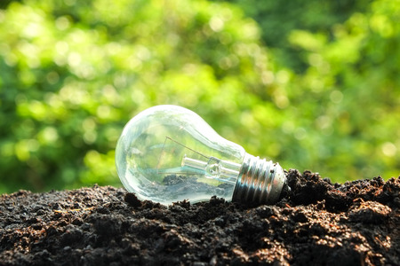 idea and energy concept Light bulb in soil