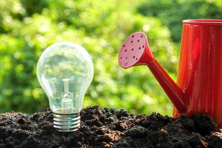 idea and energy concept Light bulb in soil