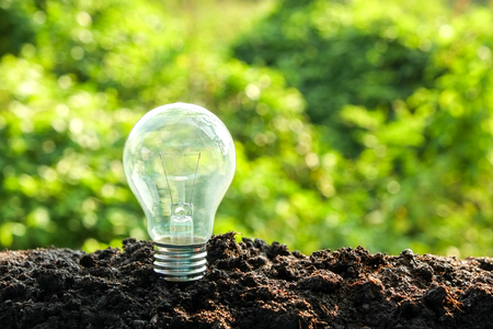 solution concept: idea and energy concept Light bulb in soil
