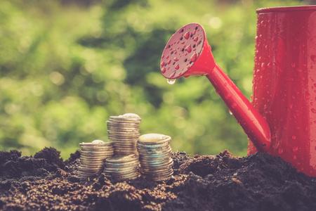 sustentabilidad: Monedas concepto del crecimiento de dinero en el suelo con efecto de filtro de estilo retro de la vendimia