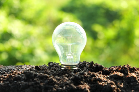 sustainable development: idea and energy concept Light bulb in soil