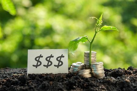 argent: économiser de l'argent pour concept d'investissement Banque d'images
