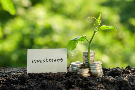 investment concept: save money for investment concept