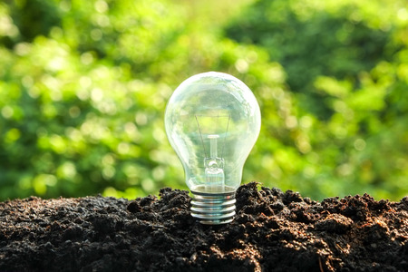 sustainability: idea and energy concept Light bulb in soil