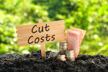 tree growing: save money for investment concept