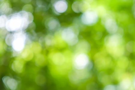 boke: abstract background boke Stock Photo