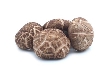 fungi: Shiitake mushroom on the White background