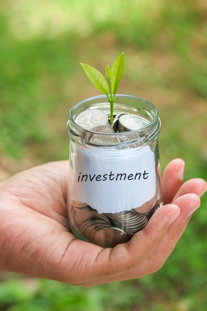 contaduria: save money for investment concept plant growing out of coins