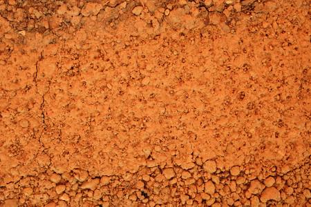 fertile land: peat soil texture background